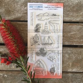 Tampon clear EXPEDITION