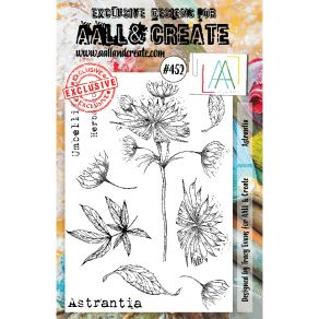 Tampons clear ASTRANTIA 452