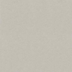 Carton gris 30,5 x 30,5 cm par Bazzill Basics Paper. Scrapbooking et loisirs créatifs. Livraison rapide et cadeau dans chaque...