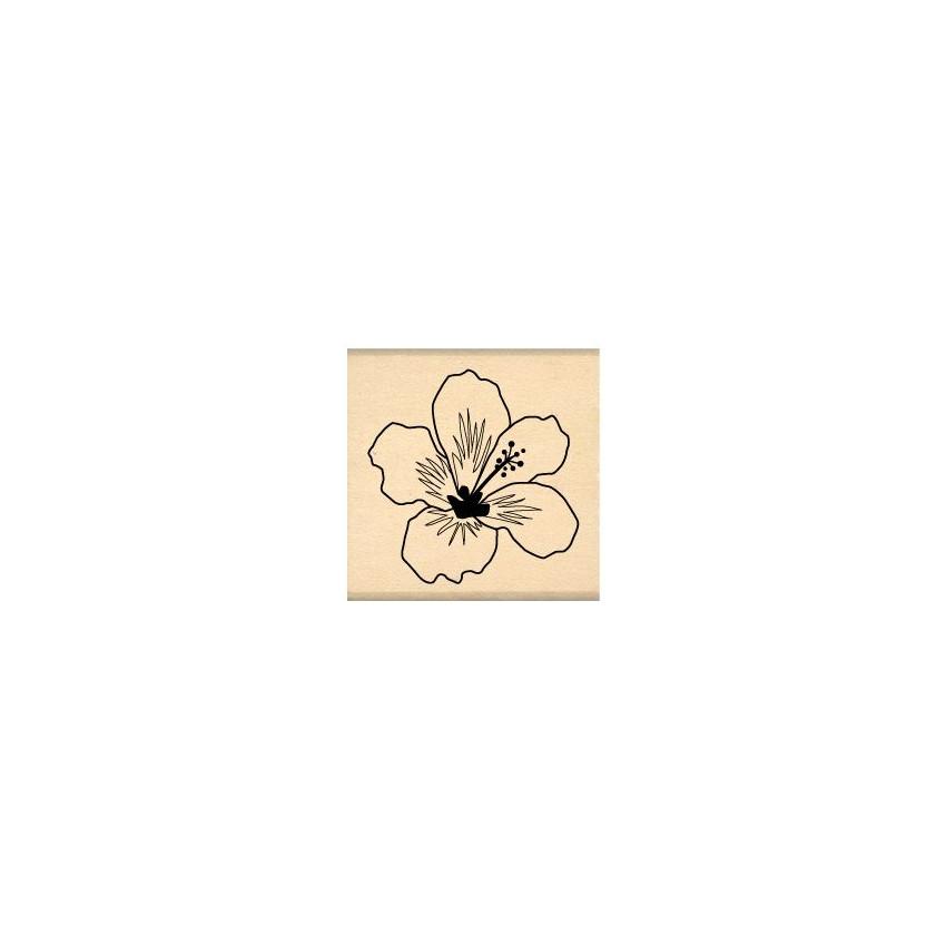 Tampon bois HIBISCUS BLANC par Florilèges Design. Scrapbooking et loisirs créatifs. Livraison rapide et cadeau dans chaque co...