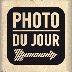 CARRÉ PHOTO DU JOUR