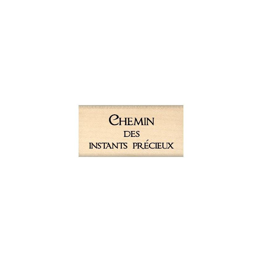 CHEMIN DES INSTANTS PRECIEUX
