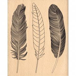 Tampon bois TROIS PLUMES par Florilèges Design. Scrapbooking et loisirs créatifs. Livraison rapide et cadeau dans chaque comm...