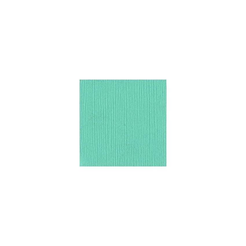 Papier uni 30,5x30,5 WHIRLPOOL par Bazzill Basics Paper. Scrapbooking et loisirs créatifs. Livraison rapide et cadeau dans ch...