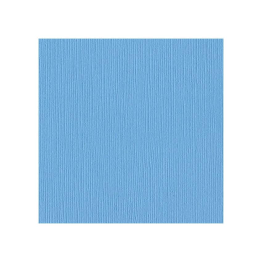 Papier uni 30,5x30,5 VIBRANT BLUE par Bazzill Basics Paper. Scrapbooking et loisirs créatifs. Livraison rapide et cadeau dans...