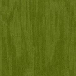 Papier uni 30,5x30,5 HILLARY par Bazzill Basics Paper. Scrapbooking et loisirs créatifs. Livraison rapide et cadeau dans chaq...