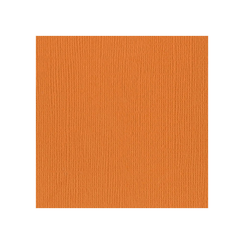 Papier uni 30,5 x 30,5 cm Bazzill ABRICOT par Bazzill Basics Paper. Scrapbooking et loisirs créatifs. Livraison rapide et cad...