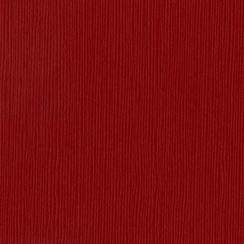 Papier uni 30,5x30,5 RUBY SLIPPER par Bazzill Basics Paper. Scrapbooking et loisirs créatifs. Livraison rapide et cadeau dans...