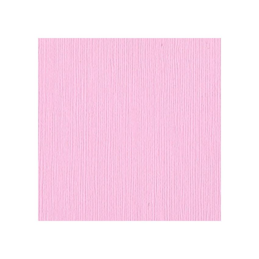 Papier uni 30,5x30,5 PINKINI par Bazzill Basics Paper. Scrapbooking et loisirs créatifs. Livraison rapide et cadeau dans chaq...