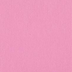 Pinkini