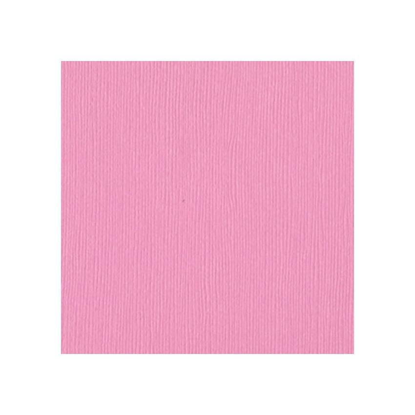 Papier uni 30,5x30,5 FUSSY par Bazzill Basics Paper. Scrapbooking et loisirs créatifs. Livraison rapide et cadeau dans chaque...