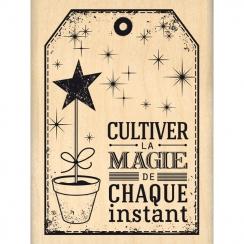 CULTIVER LA MAGIE
