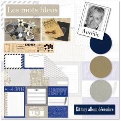 KIT TINY ALBUM DECEMBRE 2014 Les Mots Bleus