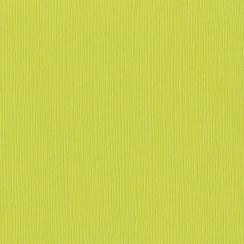 Papier uni 30,5 x 30,5 cm Bazzill GRANNY SMITH par Bazzill Basics Paper. Scrapbooking et loisirs créatifs. Livraison rapide e...