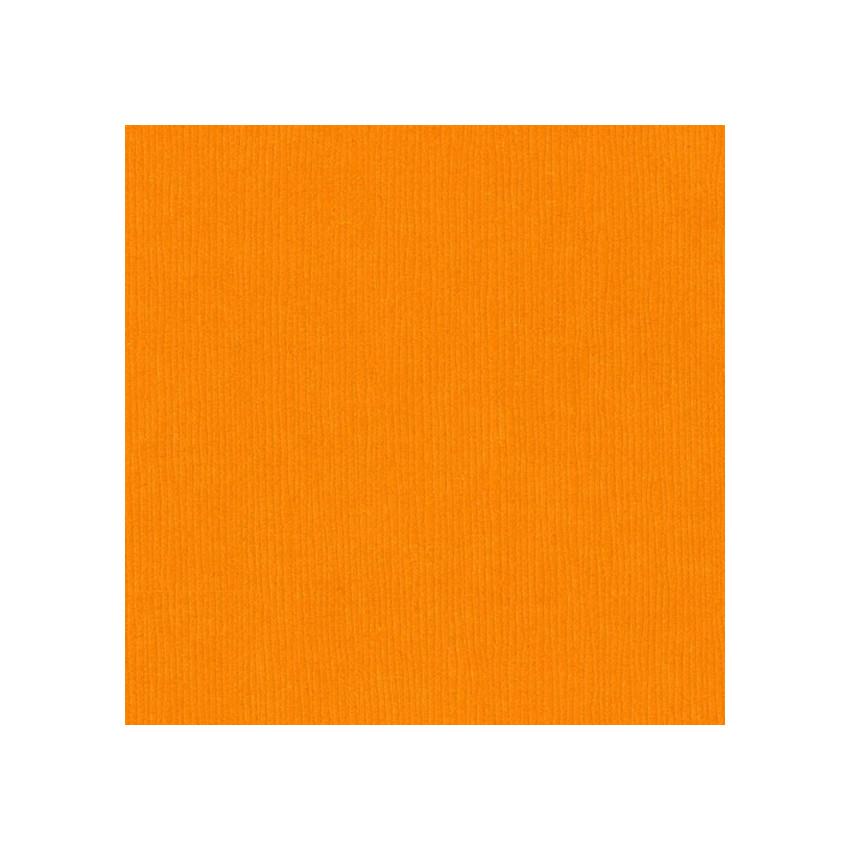 Papier uni 30,5 x 30,5 cm Bazzill CARROT CAKE par Bazzill Basics Paper. Scrapbooking et loisirs créatifs. Livraison rapide et...