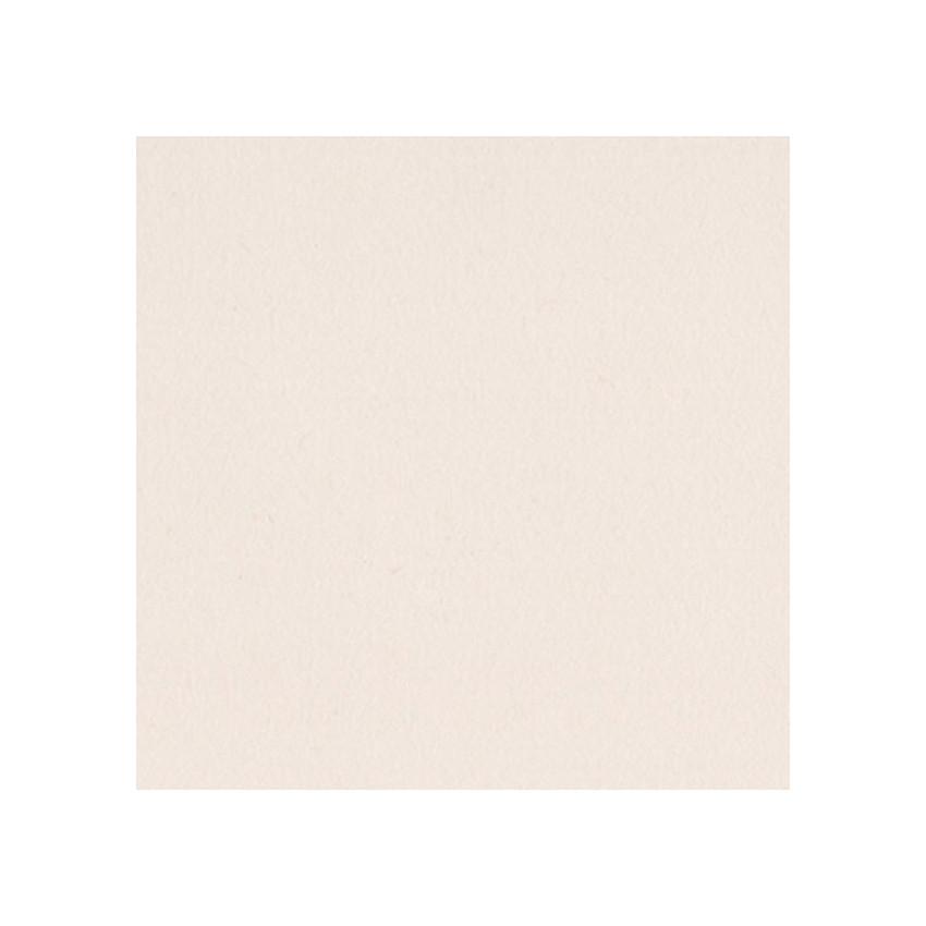 Papier uni 30,5x30,5 WALNUT CREAM par Bazzill Basics Paper. Scrapbooking et loisirs créatifs. Livraison rapide et cadeau dans...