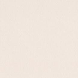 Papier uni 30,5 x 30,5 cm Bazzill WALNUT CREAM par Bazzill Basics Paper. Scrapbooking et loisirs créatifs. Livraison rapide e...