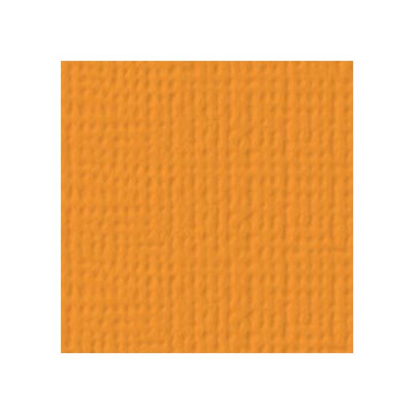 Papier uni 30,5 x 30,5 cm American Crafts MELON par American Crafts. Scrapbooking et loisirs créatifs. Livraison rapide et ca...