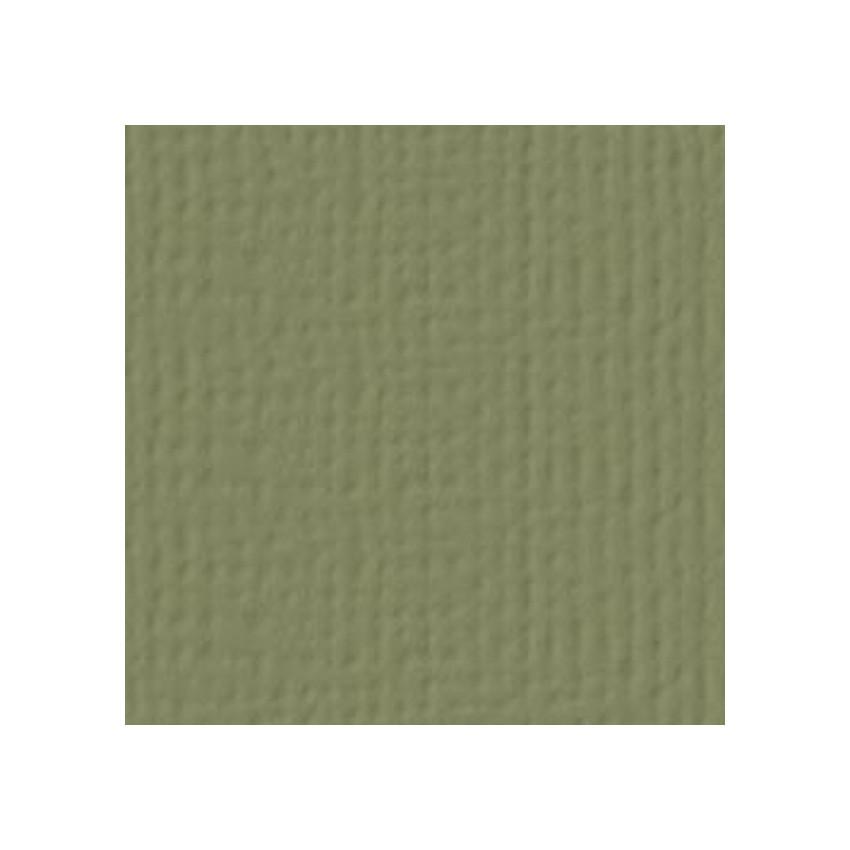 Papier uni 30,5 x 30,5 cm American Crafts OLIVE par American Crafts. Scrapbooking et loisirs créatifs. Livraison rapide et ca...