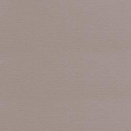 Papier uni 30,5 x 30,5 cm American Crafts NICKEL par American Crafts. Scrapbooking et loisirs créatifs. Livraison rapide et c...