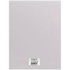 Papier calque blanc moyen (29 lb) 21.6 x 27.9 cm par Bazzill Basics Paper. Scrapbooking et loisirs créatifs. Livraison rapide...
