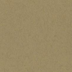 Papier uni 25 feuilles KRAFT par Bazzill Basics Paper. Scrapbooking et loisirs créatifs. Livraison rapide et cadeau dans chaq...