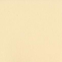 Papier uni 30,5 x 30,5 cm Bazzill PIGMENT par Bazzill Basics Paper. Scrapbooking et loisirs créatifs. Livraison rapide et cad...