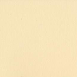 Parfait pour créer : Papier uni 30,5x30,5 PIGMENT par Bazzill Basics Paper. Livraison rapide et cadeau dans chaque commande.