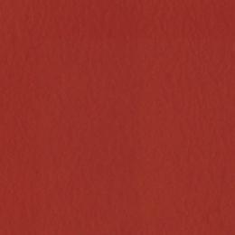 Papier uni 30,5x30,5 BAZZILL RED par Bazzill Basics Paper. Scrapbooking et loisirs créatifs. Livraison rapide et cadeau dans ...