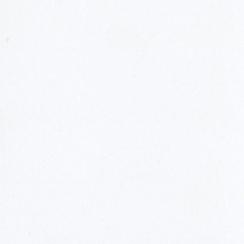 Papier uni 30,5x30,5 COCONUT SWIRL par Bazzill Basics Paper. Scrapbooking et loisirs créatifs. Livraison rapide et cadeau dan...