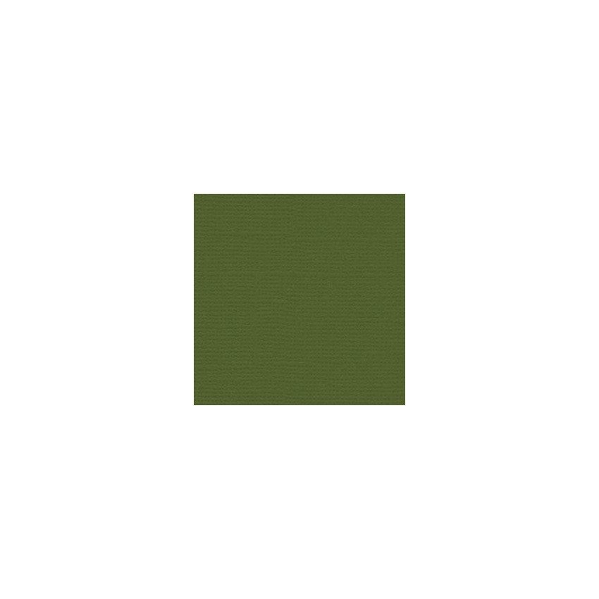 Parfait pour créer : Papier uni 30,5x30,5 NIXON par Bazzill Basics Paper. Livraison rapide et cadeau dans chaque commande.
