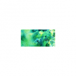 Aquarelle Brusho LEAF GREEN par Colourcraft. Scrapbooking et loisirs créatifs. Livraison rapide et cadeau dans chaque commande.