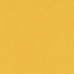Papier uni BANANA SPLIT par Bazzill Basics Paper. Scrapbooking et loisirs créatifs. Livraison rapide et cadeau dans chaque co...