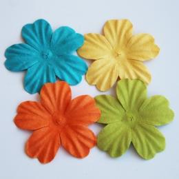 Boite de fleurs SOLEIL TROPICAL