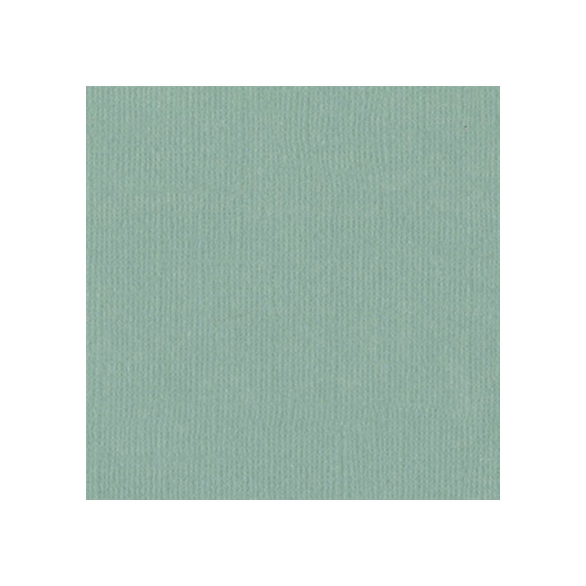Papier uni 30,5 x 30,5 cm Bazzill AQUA par Bazzill Basics Paper. Scrapbooking et loisirs créatifs. Livraison rapide et cadeau...