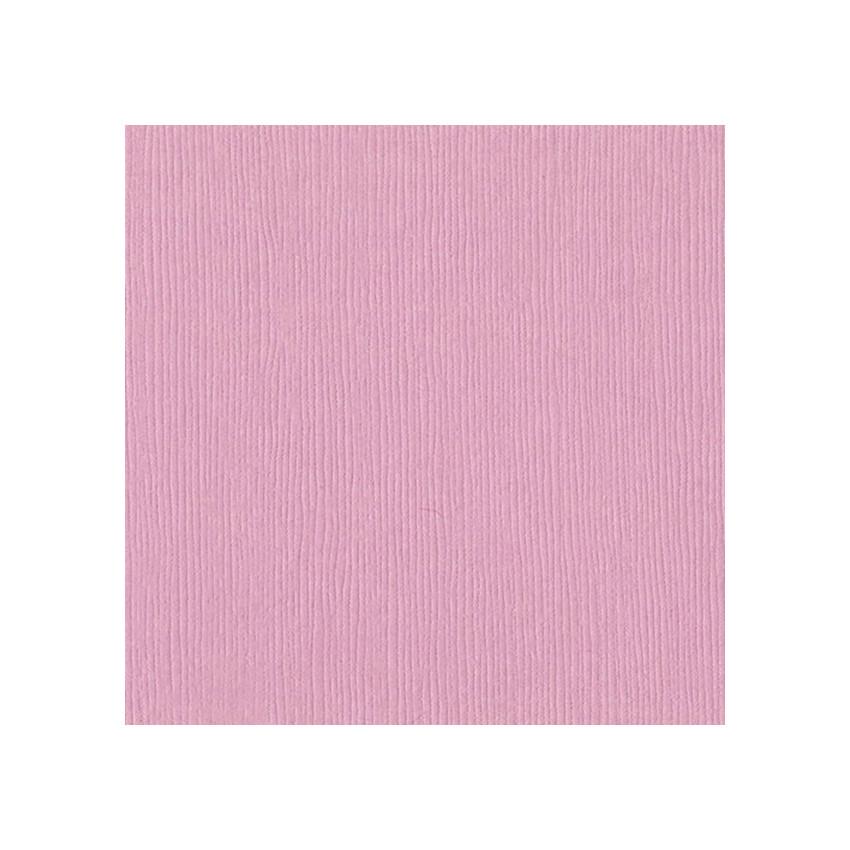 Papier uni 30,5x30,5 MAUVE ICE par Bazzill Basics Paper. Scrapbooking et loisirs créatifs. Livraison rapide et cadeau dans ch...