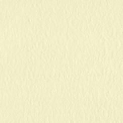 Papier uni 30,5x30,5 BUTTER CREAM par Bazzill Basics Paper. Scrapbooking et loisirs créatifs. Livraison rapide et cadeau dans...