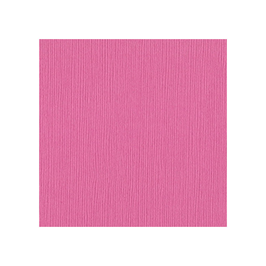 Papier uni 30,5x30,5 CHABLIS par Bazzill Basics Paper. Scrapbooking et loisirs créatifs. Livraison rapide et cadeau dans chaq...