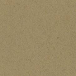 Papier uni 30,5x30,5 KRAFT par Bazzill Basics Paper. Scrapbooking et loisirs créatifs. Livraison rapide et cadeau dans chaque...
