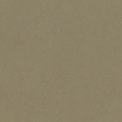 Papier uni 25 feuilles PEANUT CLUSTER par Bazzill Basics Paper. Scrapbooking et loisirs créatifs. Livraison rapide et cadeau ...