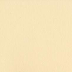Papier uni 25 feuilles PIGMENT par Bazzill Basics Paper. Scrapbooking et loisirs créatifs. Livraison rapide et cadeau dans ch...