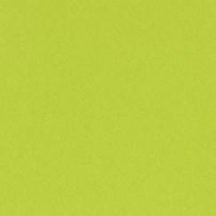 Parfait pour créer : Papier uni 30,5x30,5 JUICY PEAR par Bazzill Basics Paper. Livraison rapide et cadeau dans chaque commande.