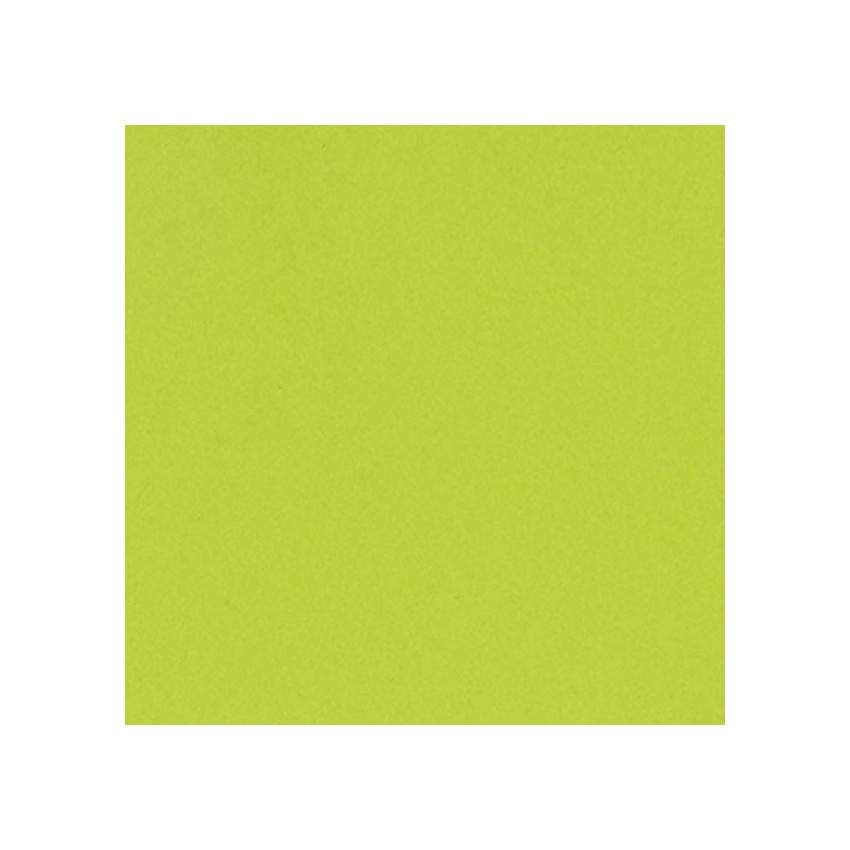 Papier uni 30,5x30,5 JUICY PEAR par Bazzill Basics Paper. Scrapbooking et loisirs créatifs. Livraison rapide et cadeau dans c...
