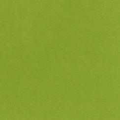 Papier uni 30,5x30,5 EASTER GRASS par Bazzill Basics Paper. Scrapbooking et loisirs créatifs. Livraison rapide et cadeau dans...