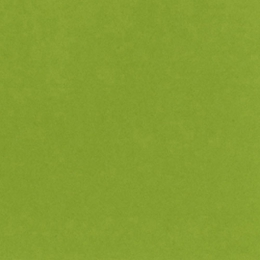 Papier uni 30,5 x 30,5 cm Bazzill EASTER GRASS par Bazzill Basics Paper. Scrapbooking et loisirs créatifs. Livraison rapide e...