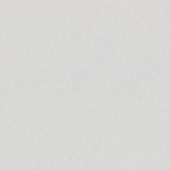 Papier uni 30,5x30,5 FIG SWIRL par Bazzill Basics Paper. Scrapbooking et loisirs créatifs. Livraison rapide et cadeau dans ch...