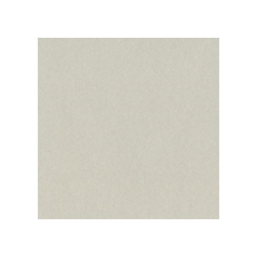 Papier uni 30,5x30,5 TAFFY par Bazzill Basics Paper. Scrapbooking et loisirs créatifs. Livraison rapide et cadeau dans chaque...