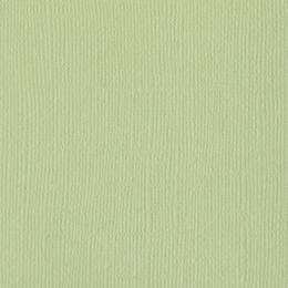 Papier uni 30,5 x 30,5 cm Bazzill ALOE VERA par Bazzill Basics Paper. Scrapbooking et loisirs créatifs. Livraison rapide et c...