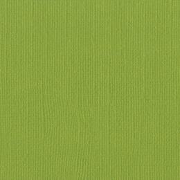 Papier uni 30,5x30,5 PARAKEET par Bazzill Basics Paper. Scrapbooking et loisirs créatifs. Livraison rapide et cadeau dans cha...