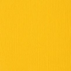 Papier uni 30,5x30,5 DESERT MARIGOLD par Bazzill Basics Paper. Scrapbooking et loisirs créatifs. Livraison rapide et cadeau d...